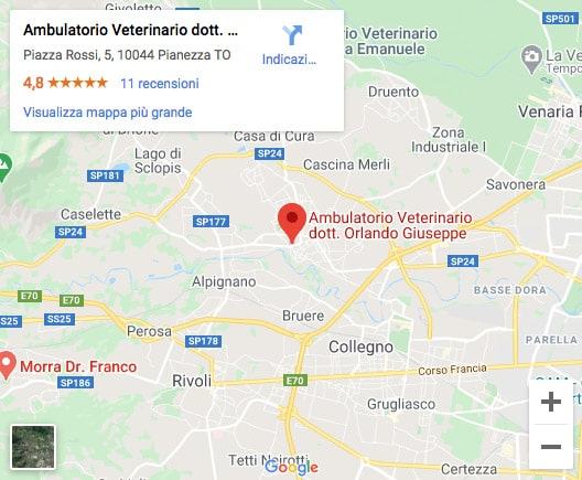 Ambulatorio Veterinario Pianezza Mappa